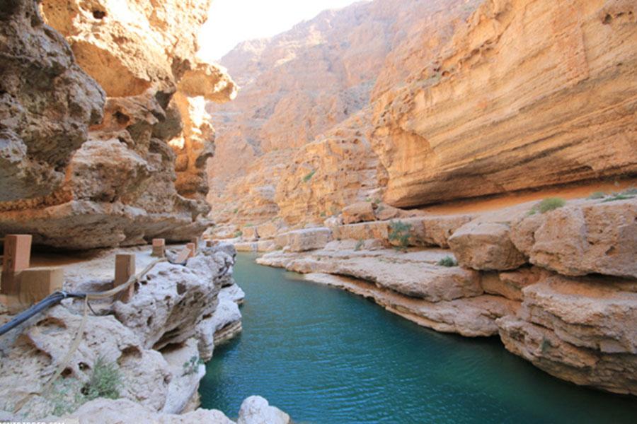 Oman soft